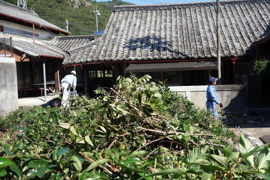 清掃中。剪定された植木の枝や、引かれた雑草がうず高く積まれている。背後に見えるのが、古い生家そのままの建物である。